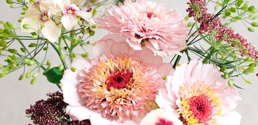 Blumenstraeusse zum selbst pfluecken, aus dem Garten-Designstudio von Jora Dahl